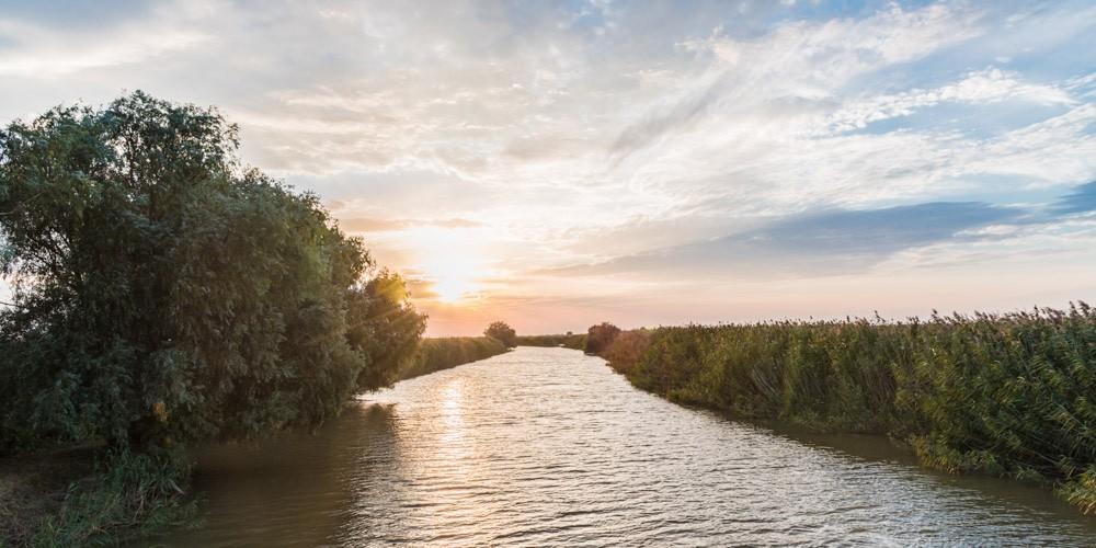 Утверждены ТАКСЫ для исчисления размера ущерба, причиненного водным биологическим ресурсам!
