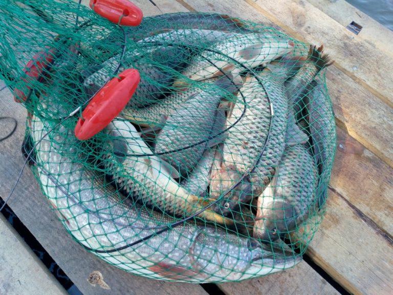 рыбалка36