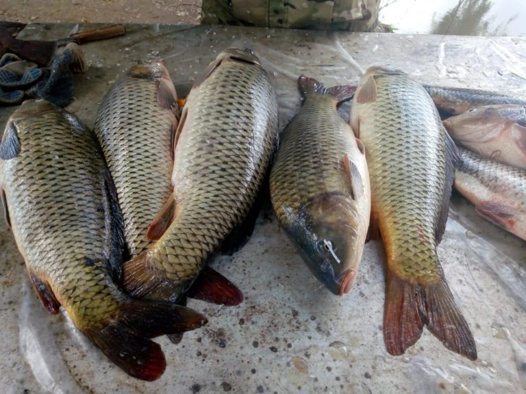 рыбалка42