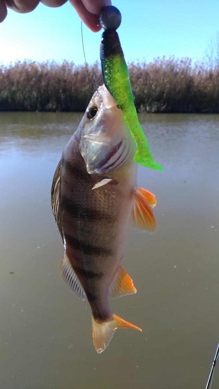 рыбалка69