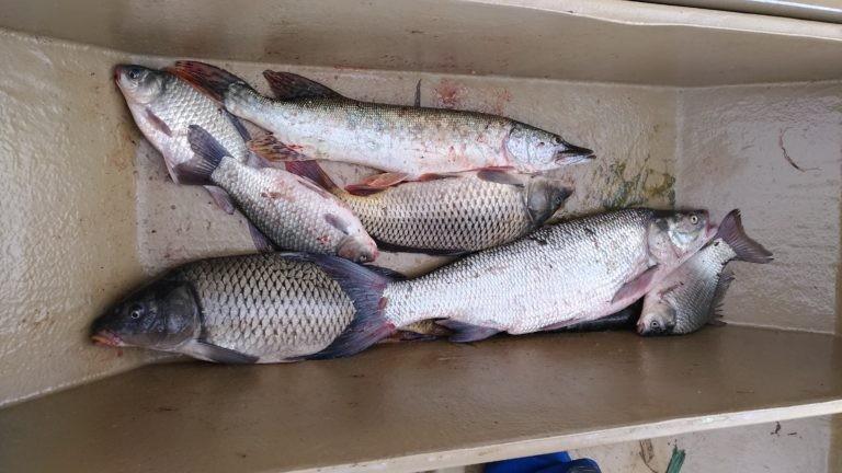 рыбалка70