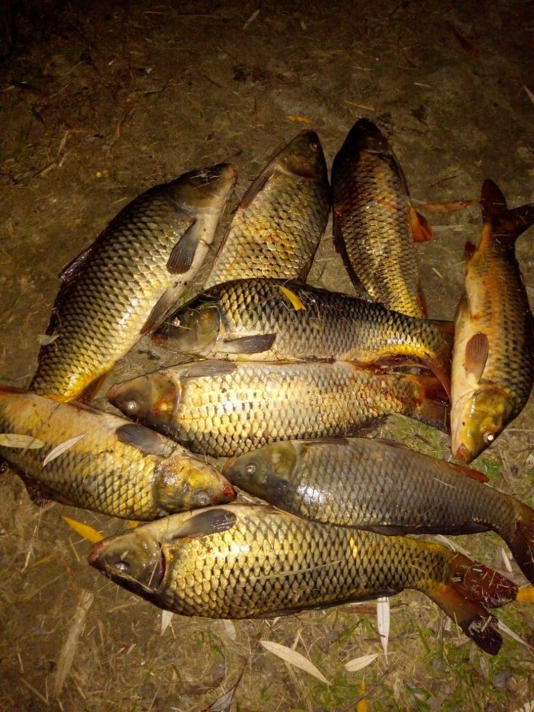 рыбалка85